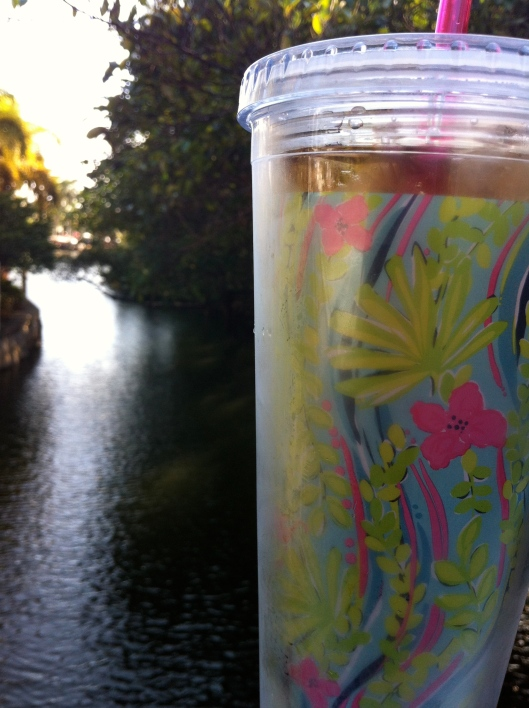Sweet tea in a Lily tumbler. When it's hot, there's nothin' better!