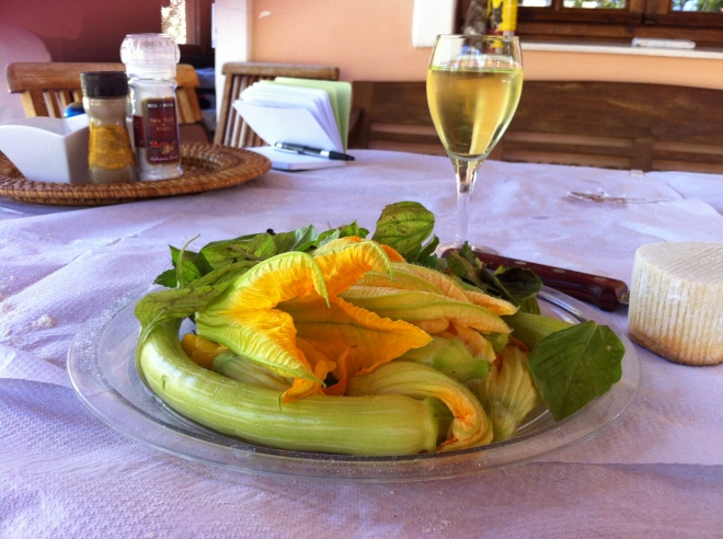 Zucchini blossoms just waiting to be stuffed or made into fritters and served with a light dusting of freshly grated Mizithra cheese.