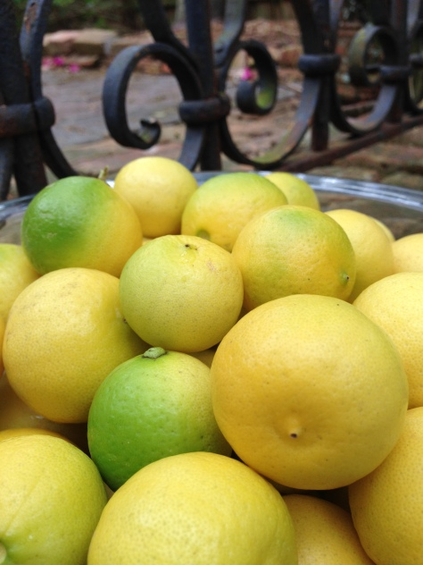 Creamy yellow is the shade you want in a key lime. In this case big is better. Look for limes the size of ping-pong balls.