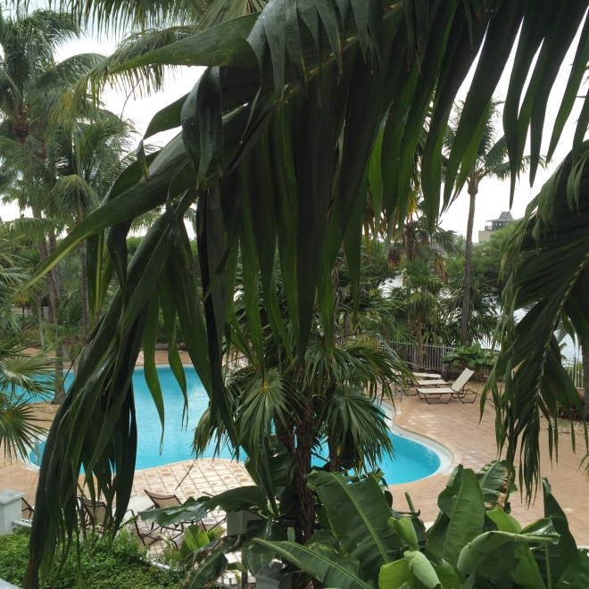 Our pool from the second story balcony. We were enjoying a splendid early A.M. sun shower when this was taken!